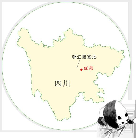 都江堰基地